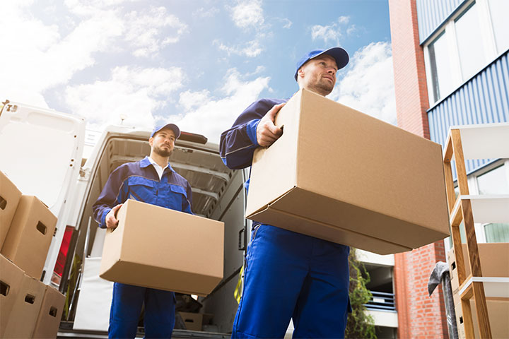 solid logistics networks ensure the safety and timing of  delivery